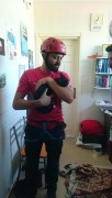 Kedi Operasyonu